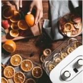 摩飞电器(Morphyrichards)MR6255干果机料理机食品风干机 家用水果蔬菜肉类脱水机干燥机